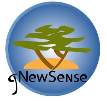 gNewSense 4.0